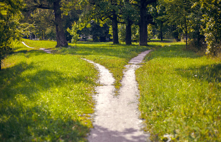 Photo for Bifurcation of a footpath in the park - Royalty Free Image