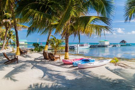Foto de Palms and beach at Caye Caulker island, Belize - Imagen libre de derechos