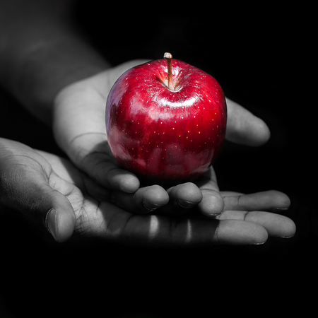 Photo pour Hands holding a red apple, the forbidden fruit, in black background. - image libre de droit