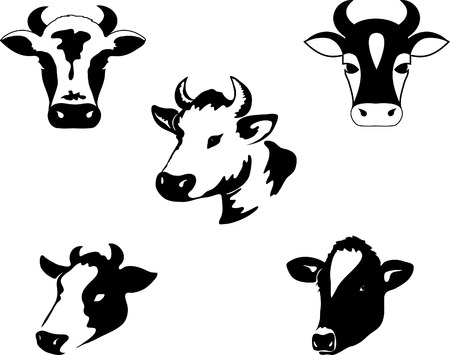 Icon of a cow
