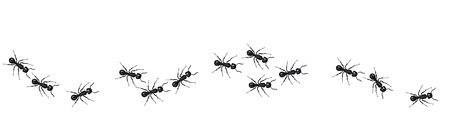 Ilustración de A line of worker ants marching in search of food. Vector banner - Imagen libre de derechos