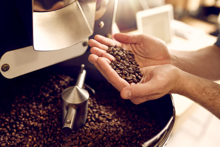 Foto de Cropped shot of a man's hands holding freshly roastd aromatic coffee beans over a modern machine used for roasting beans - Imagen libre de derechos