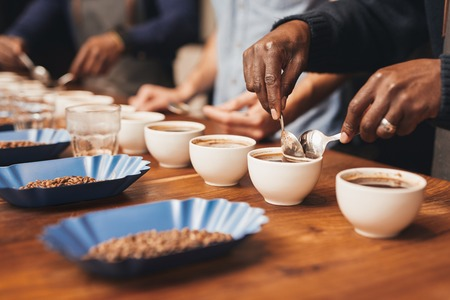 Foto de Cropped image of the hands of professional baristas at a wooden table with many cups, training to make the perfect cup of coffee with a variety of roasted coffee beans - Imagen libre de derechos