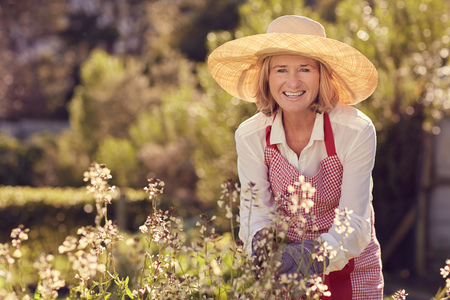 Photo pour Portrait of a senior woman smiling at the camera while bending over a rocket plant with flowers, while wearing a straw hat and apron in her garden on a sunny morning - image libre de droit