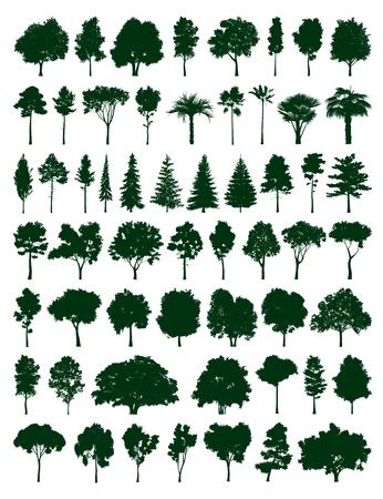 Ilustración de Trees set - Imagen libre de derechos