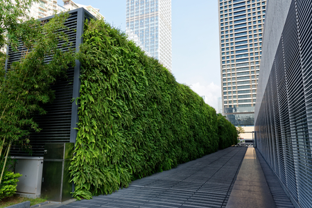 Foto de Green wall made of plants on the airconditioning centilation - Imagen libre de derechos