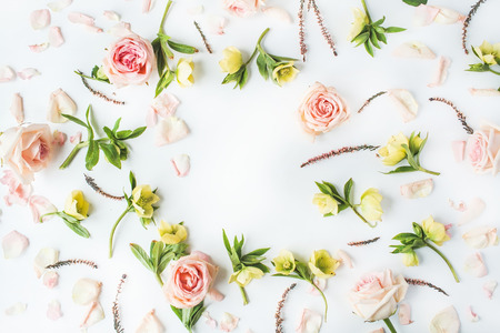 Photo for frame with pink roses, branches, leaves and petals isolated on white background. flat lay, overhead view - Royalty Free Image