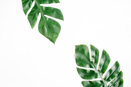 Foto de Tropical palm leaves. Flat lay, top view - Imagen libre de derechos