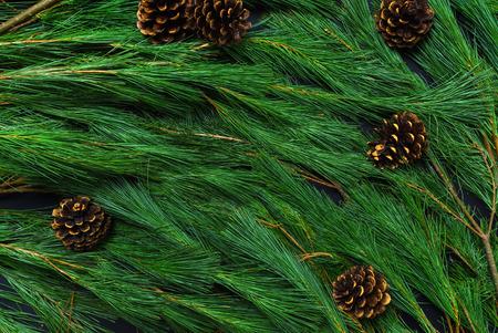 Photo pour holiday background  - image libre de droit