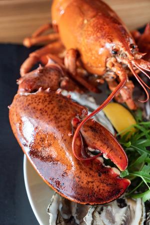 Foto de cooked lobster closeup - Imagen libre de derechos
