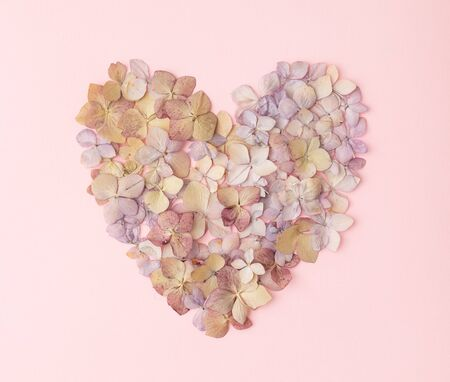 Photo pour Flowers of a hydrangea in the form of a heart on the pink background - image libre de droit