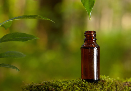 Photo pour Dripping essential oil into a bottle from leaf. Natural medicines straight from nature. - image libre de droit