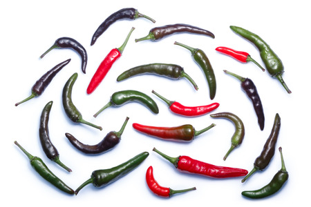 Photo for Purple Haze chile peppers, ripe, ripening and unripe pods (C. annuum), top view. Clipping paths, shadows separated - Royalty Free Image