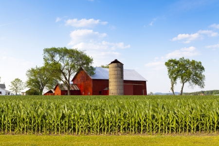 Foto de American Countryside - Imagen libre de derechos