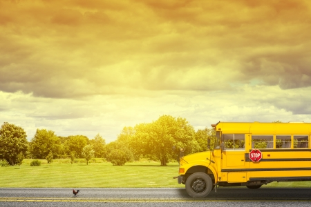 Foto de School Bus on american country road in the morning - Imagen libre de derechos