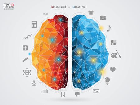 Ilustración de vector illustration of a brain on background - Imagen libre de derechos