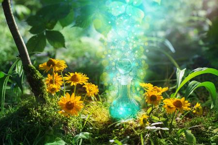Foto de Magic potion in bottle in forest - Imagen libre de derechos