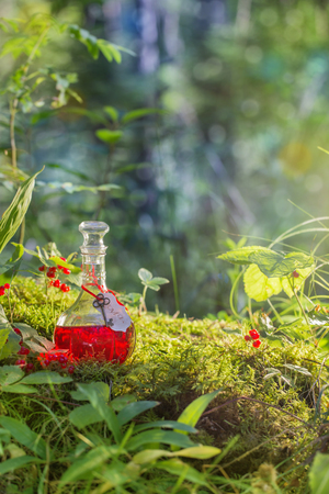 Foto de Magic potion in bottle in forest - Imagen libre de derechos