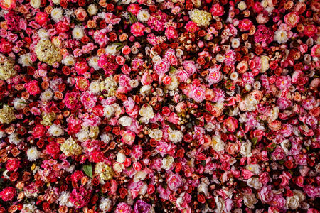 Photo pour Closeup image of beautiful flowers wall background with amazing red and white roses. - image libre de droit