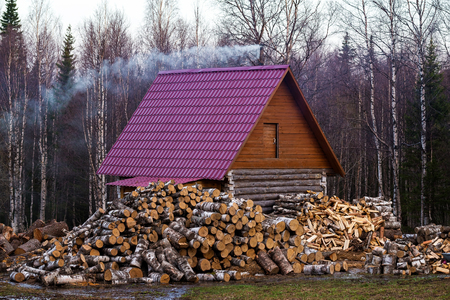 Photo pour Rural Russian wooden house with firewood logs and spring forest background. - image libre de droit