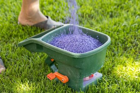 Foto für Manual fertilizing of the lawn in back yard in spring time close up - Lizenzfreies Bild