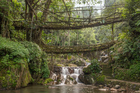 Foto de Famous Double Decker living roots bridge near Nongriat village, Cherrapunjee, Meghalaya, India. This bridge is formed by training tree roots over years to knit together. - Imagen libre de derechos
