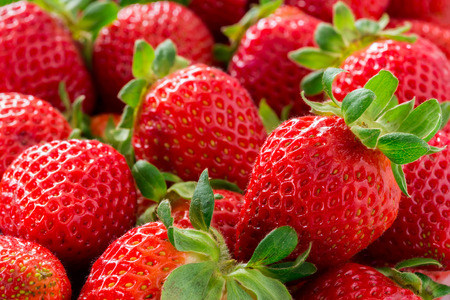 Photo for Strawberries - Royalty Free Image