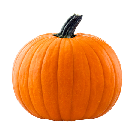 Photo pour Pumpkin isolated on white background - image libre de droit