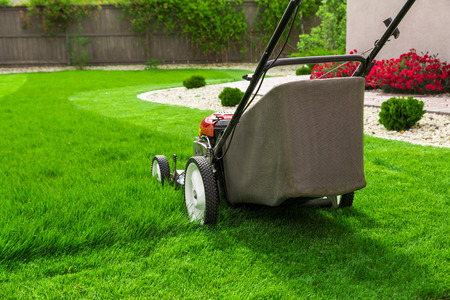 Photo for Lawn mower on green grass - Royalty Free Image