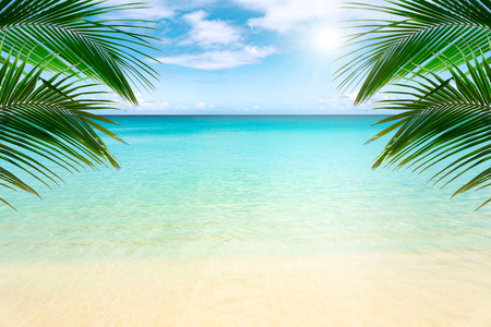 Photo for Sunny tropical beach with palm trees - Royalty Free Image
