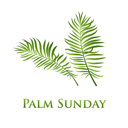 Illustration for Palm leafs vector icon. Vector illustration for the Christian holiday Palm Sunday. Lettering quote and two palm branches - Royalty Free Image