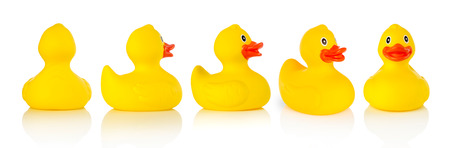 Photo for Rubber ducks - Royalty Free Image