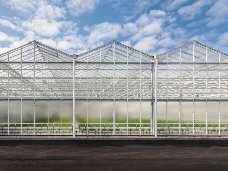 Front view of a new greenhouse in The Netherlands