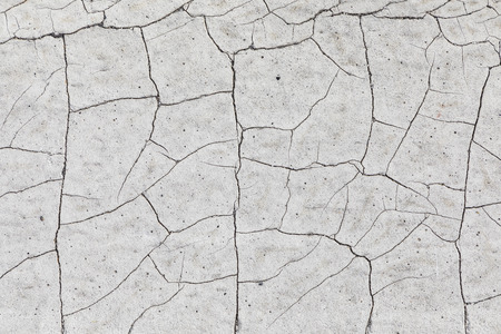 Photo for background of dried cracked loam - Royalty Free Image