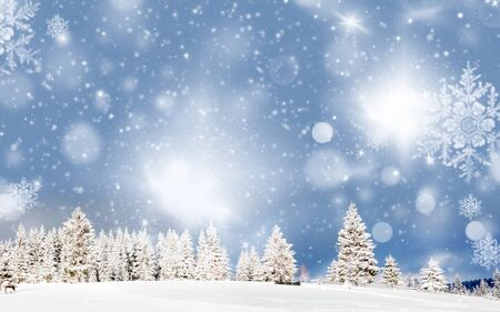 amazing Christmas background with snowy firs winter landscape