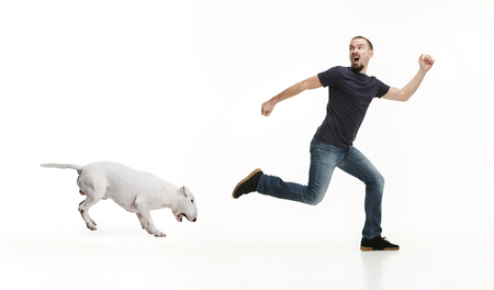 Photo for Emotional Portrait of scared man and his dog, concept of friendship and care of man and animal. Bull Terrier type Dog on white studio background - Royalty Free Image