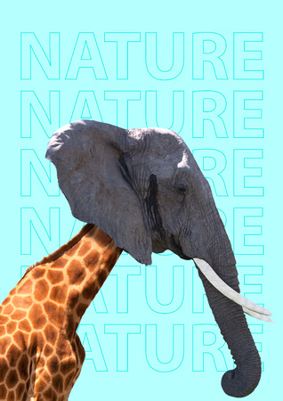 Foto de Teamwork can be different. In touch with wild nature - it may be friendly even if its forest or desert. Giraffe headed by elephant against blue background. Modern design. Contemporary art collage. - Imagen libre de derechos