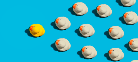 Photo for Rubber ducks leadership concept on a blue background - Royalty Free Image
