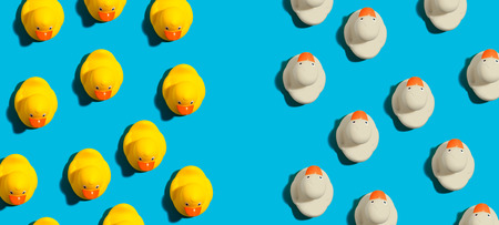 Photo for White and yellow rubber ducks in different directions concept - Royalty Free Image