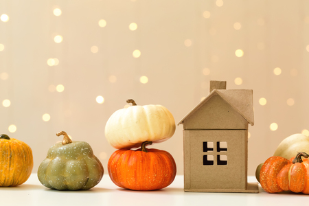 Foto de Collection of autumn pumpkins on a shiny light background - Imagen libre de derechos