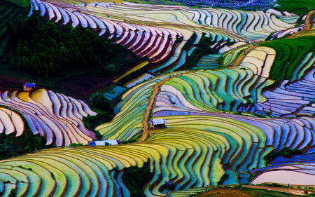 Photo for Terraced ricefield in Mu Cang Chai in water season, Vietnam - Royalty Free Image