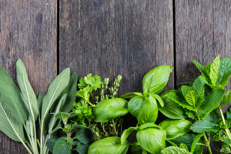Foto de Fresh herbs from garden , on wooden rustic background - Imagen libre de derechos