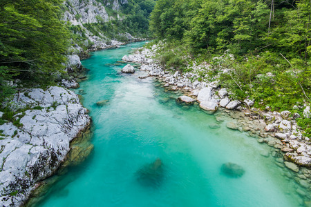 Photo for Crystal clear water in river Soca,Triglav,Slovenia. - Royalty Free Image