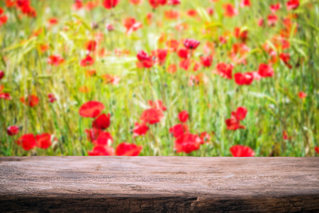 Photo for Poppy fields at summer, produck placing template. - Royalty Free Image