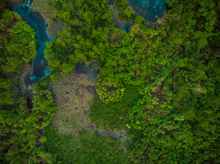 Foto de Top down aerial view over Zelenci Reserve,Slovenia. - Imagen libre de derechos