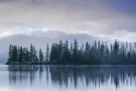 Photo for Fogg over lake side and forest with water reflection. - Royalty Free Image