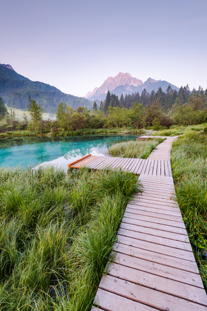 Photo for Wooden bridge in Zelenci parkland, Slovenia. - Royalty Free Image