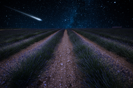 Photo pour Perseid Meteor Shower and the Milky Way over lavender fields in Provence,France - image libre de droit