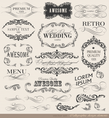 Illustration pour calligraphic design elements and page decoration/ vector set - image libre de droit