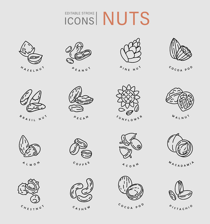 Illustrazione per Vector icon and logo for nuts and seeds. Editable outline stroke size. Line flat contour, thin and linear design. Simple icons. Concept illustration. Sign, symbol, element. - Immagini Royalty Free